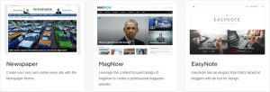 Premium WP Theme-NEWSPAPER